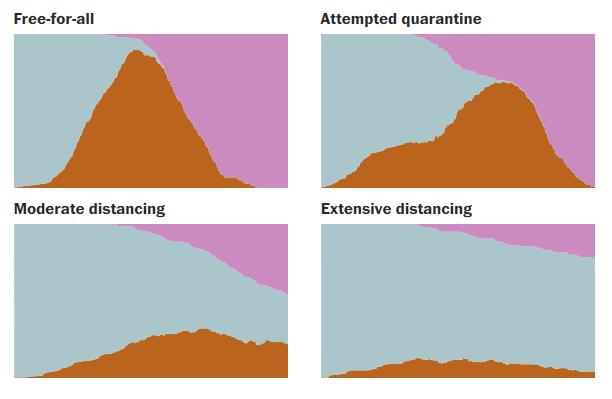 Symulacje rozwoju epidemii przy różnych zachowaniach społeczeństwa.